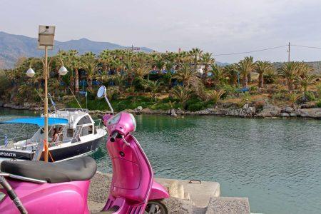 Palmenhain: Palmen am Hafen von Sissi auf Kreta